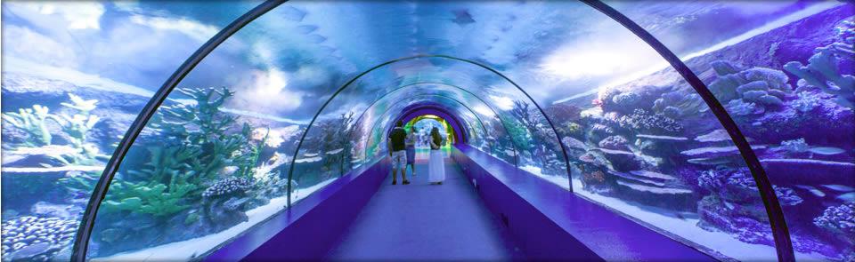 Okyanus Akvaryum 3