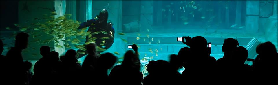 Okyanus Akvaryum 4