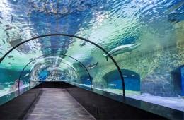 Aqua Diyarbakır